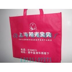 沧州市定做无纺布环保袋
